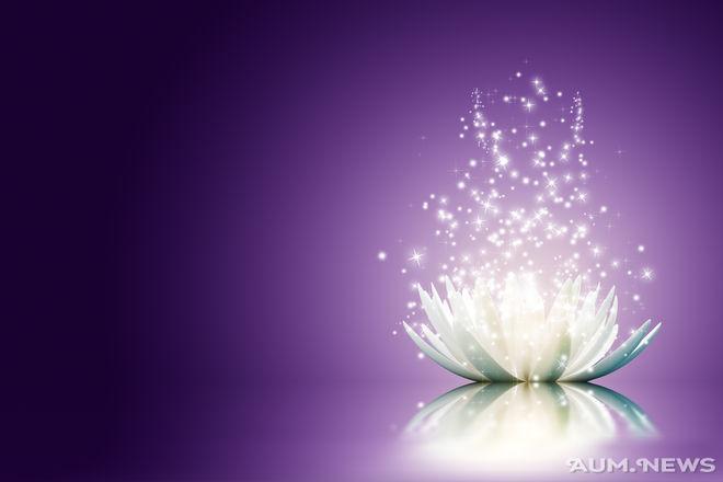 Практика на основе «Цветок Лотоса»
