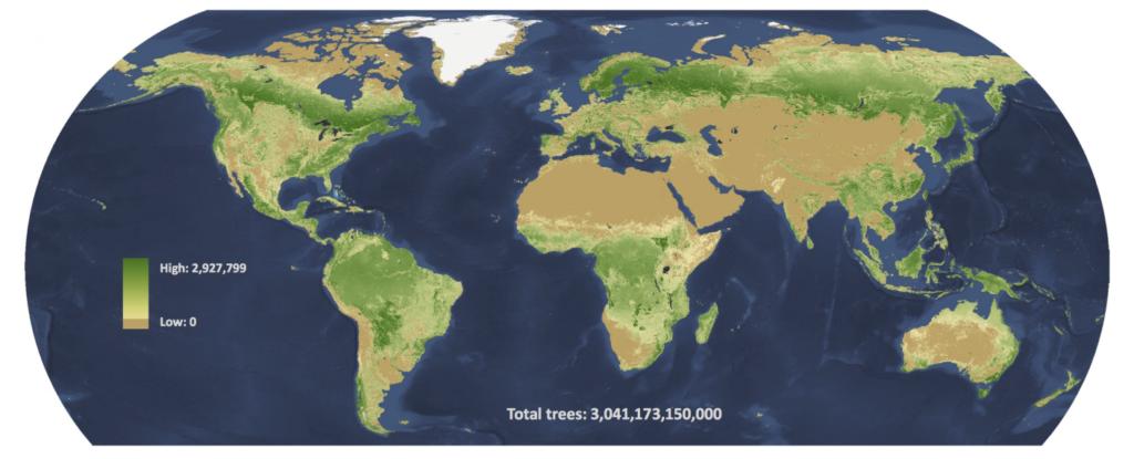 По последним подсчетам, в мире три триллиона деревьев, но и эти цифры могут быть занижены: данных по тропическим лесам не очень много. К тому же, согласно новой работе, получается, что в Амазонии деревья стоят менее плотно, чем на далеком Севере, во что не слишком просто поверить / ©Crowther et al.