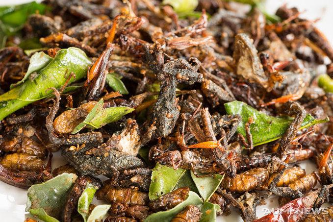 Салат из жуков, техномясо и вино из пчел. Что человечество будет есть в 2050-м